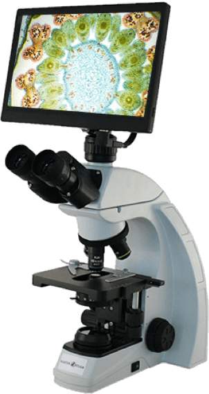 Upgrade to Digital Microscope
