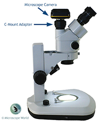 Microscope Camera and C-Mount