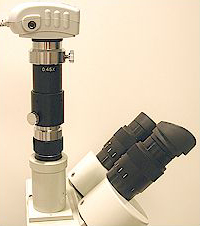 C-Mount adapted microscope camera